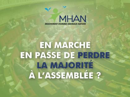 En Marche en passe de perdre la majorité à l'Assemblée Nationale !